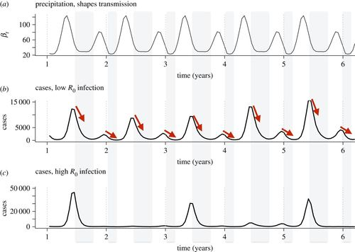 Identifying climate drivers of infectious disease dynamics