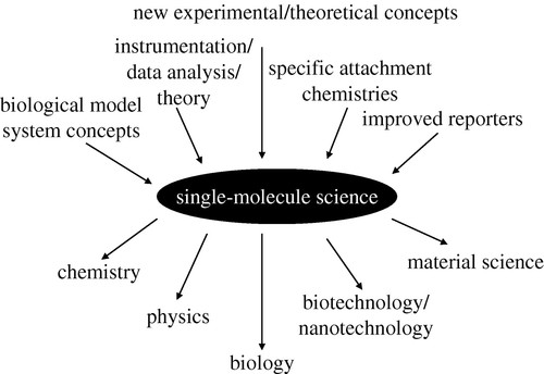 Single Molecule Biophysics At The Interface Of Biology Physics And