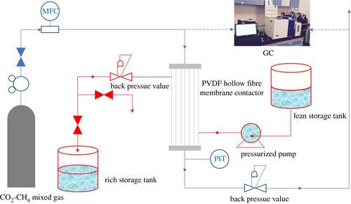 Surface modification of poly(vinylidene fluoride) hollow
