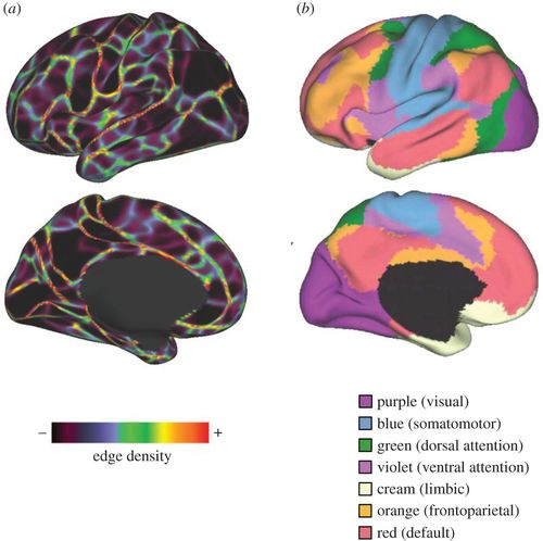 Cerebral cartography and connectomics   Philosophical