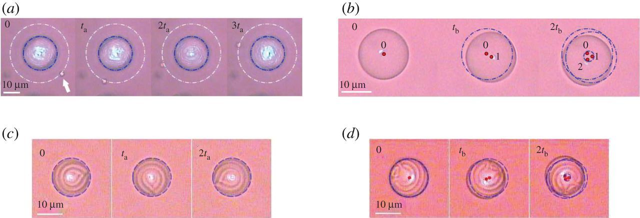 Pushing, pulling and twisting liquid crystal systems