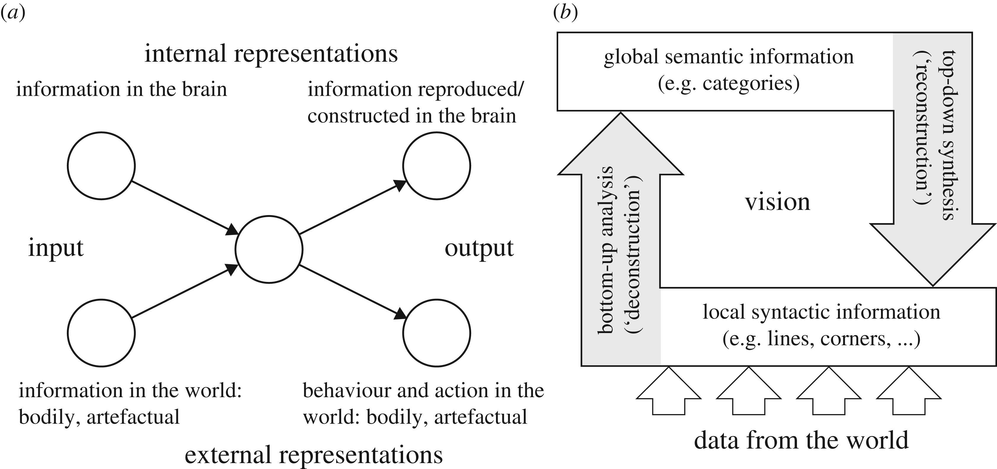 A synergetic perspective on urban scaling, urban regulatory