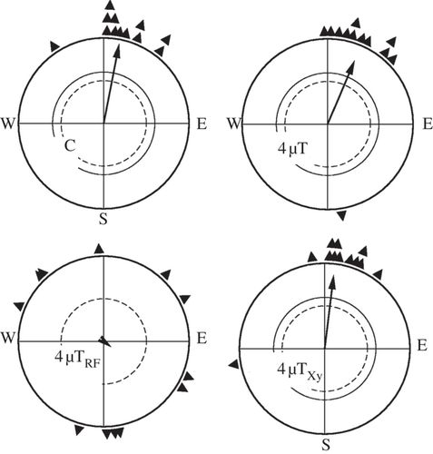 Avian Magnetic Compass Can Be Tuned To Anomalously Low Magnetic