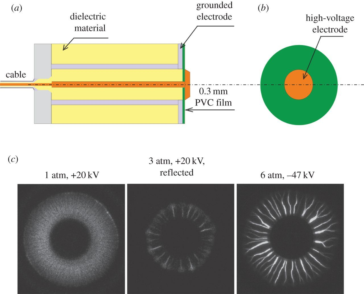 Dielectric barrier discharge for multi-point plasma-assisted