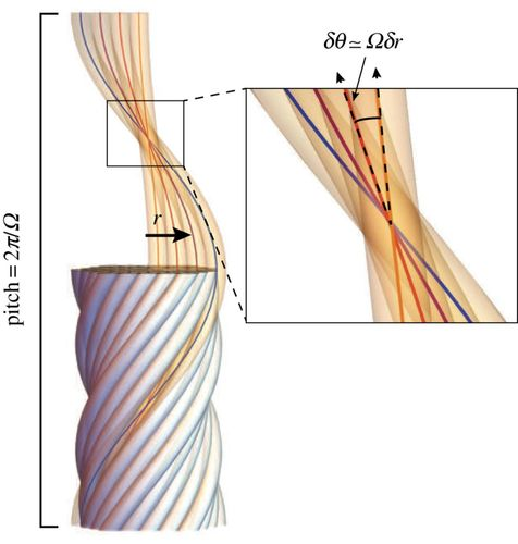 How geometric frustration shapes twisted fibres, inside and