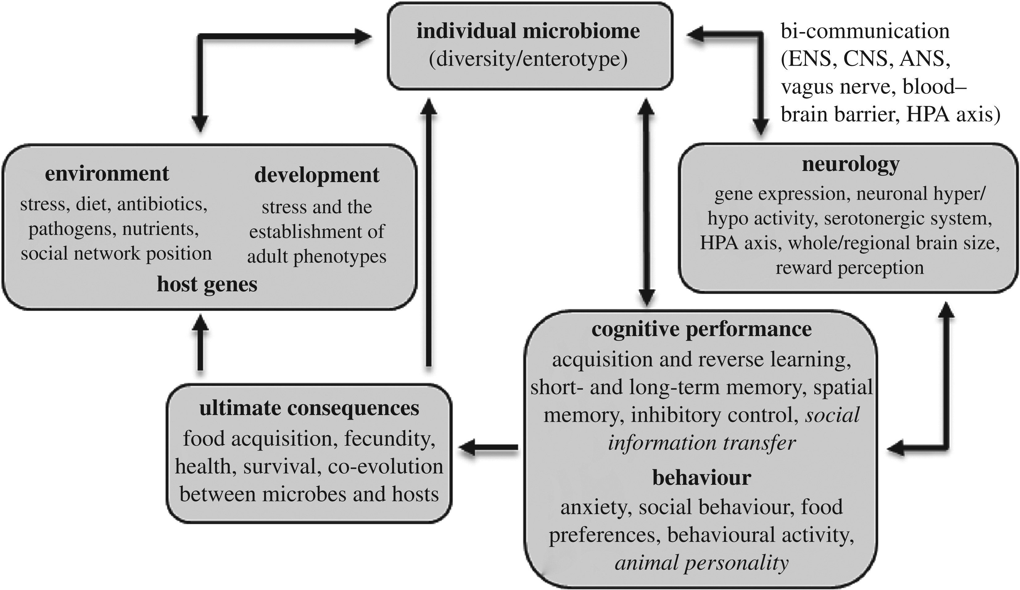 Genetic Convergence Between Cognition >> The Gut Microbiome As A Driver Of Individual Variation In Cognition