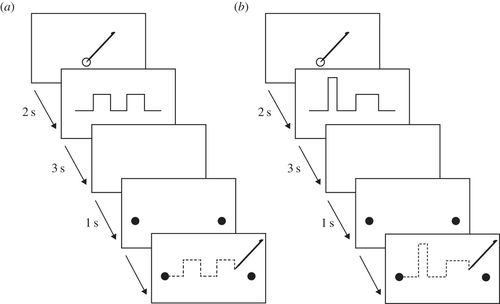 The ontogeny of visual–motor memory and its importance in