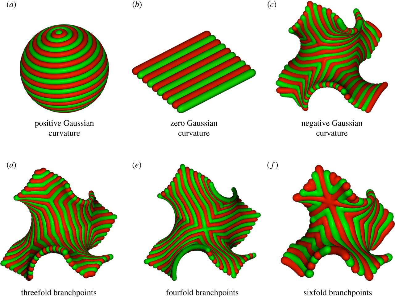 Optimal packings of three-arm star polyphiles: from
