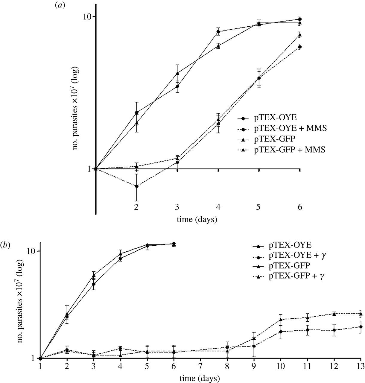 Prostaglandin F2α synthase in Trypanosoma cruzi plays critical roles