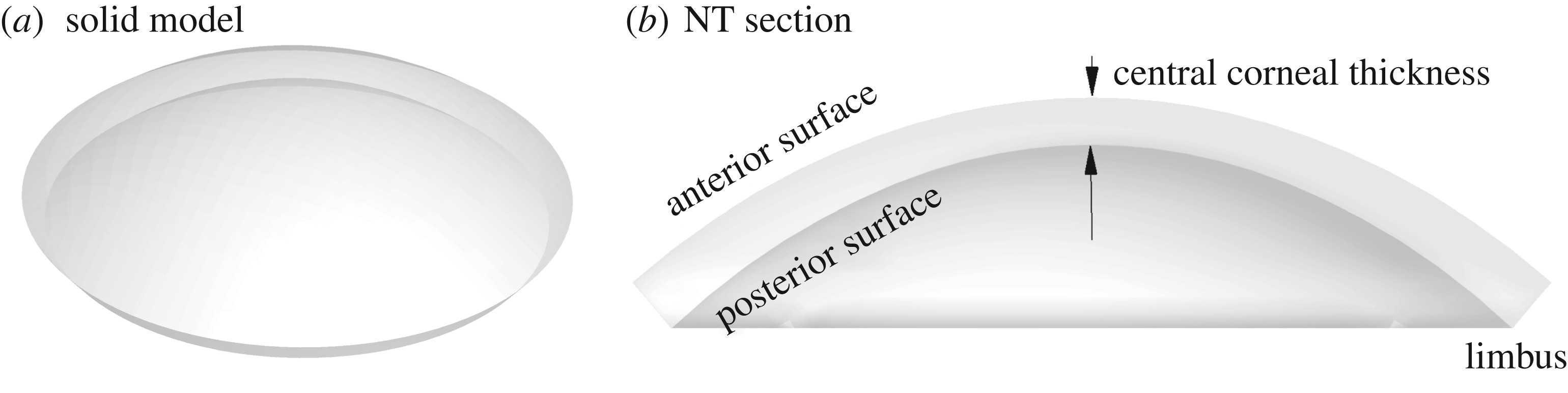 A microstructural model of cross-link interaction between