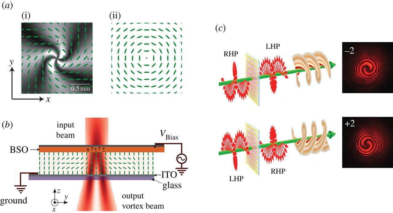 Light–matter interaction induces a single positive vortex with