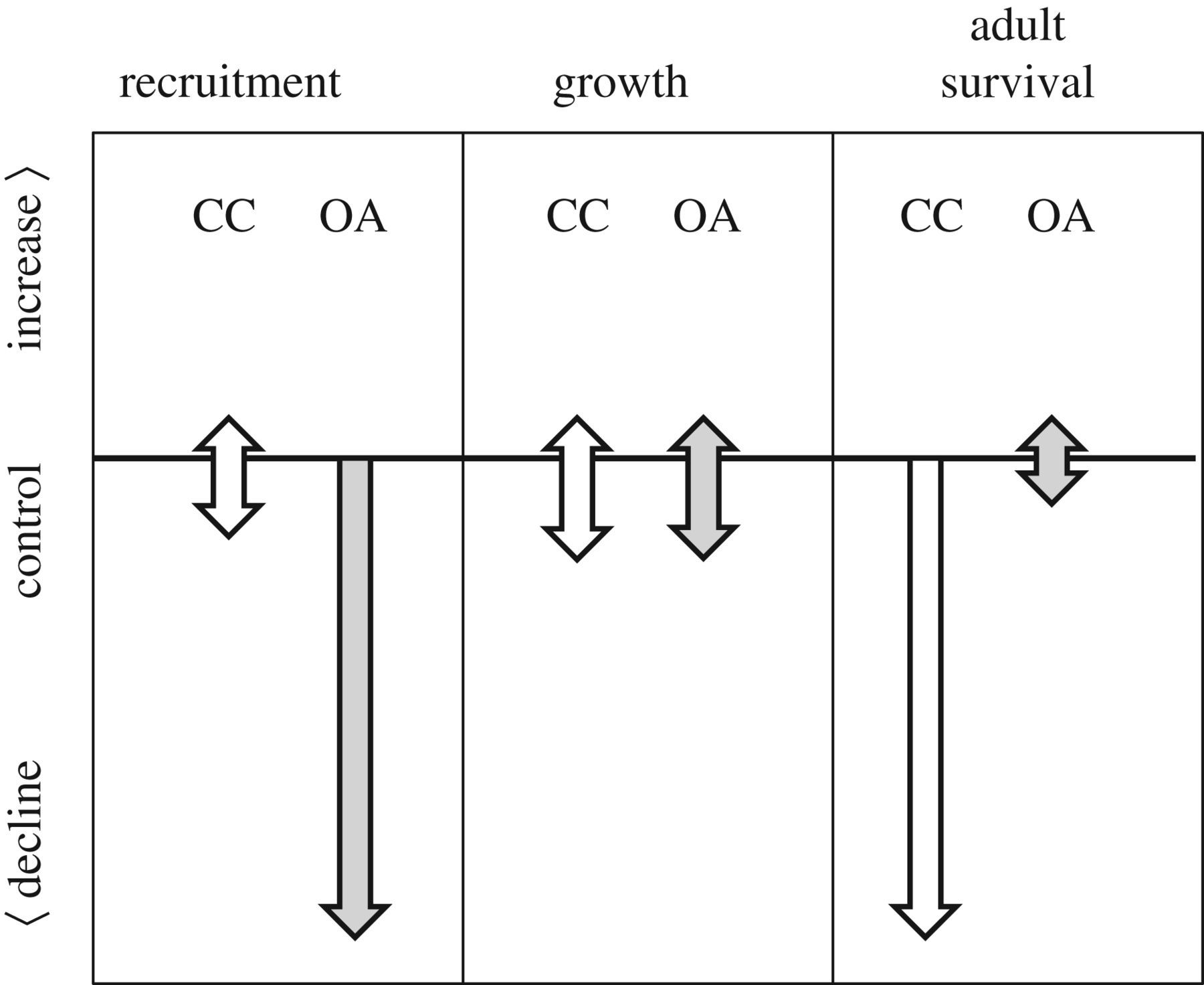 Low recruitment due to altered settlement substrata as