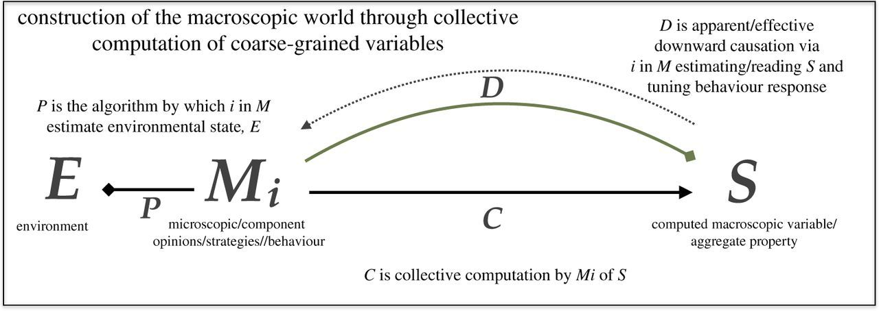 Coarse-graining as a downward causation mechanism