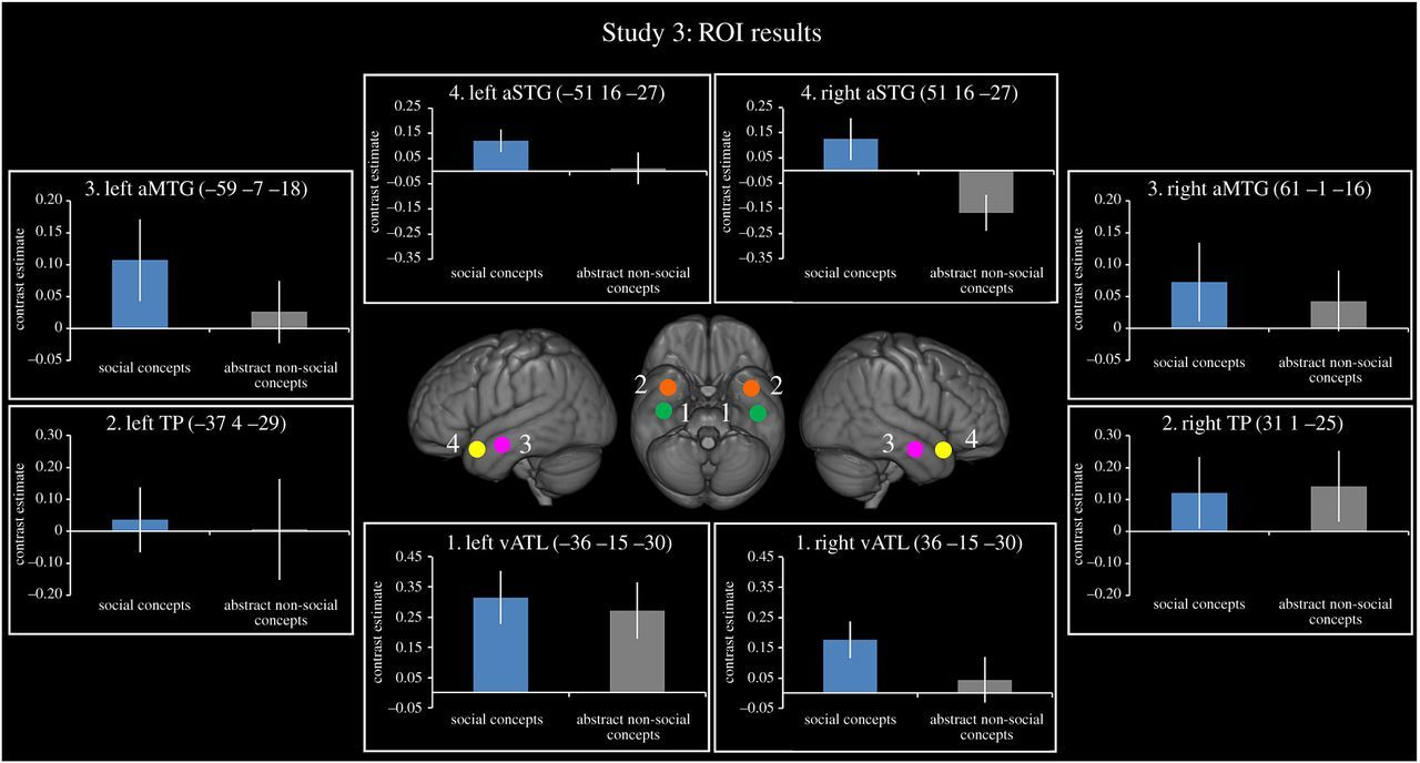 Concrete versus abstract forms of social concept: an fMRI