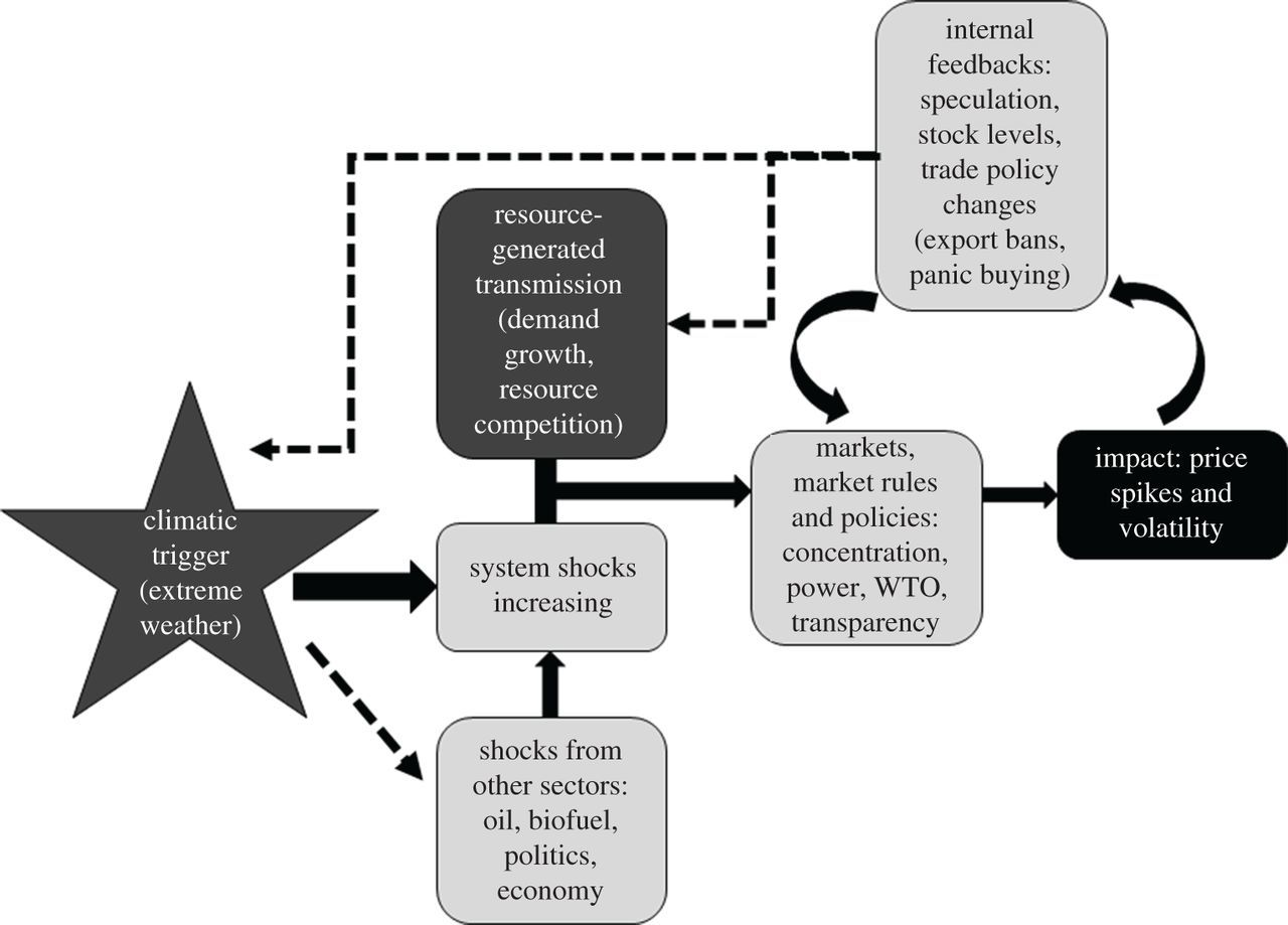 Transmission of climate risks across sectors and borders