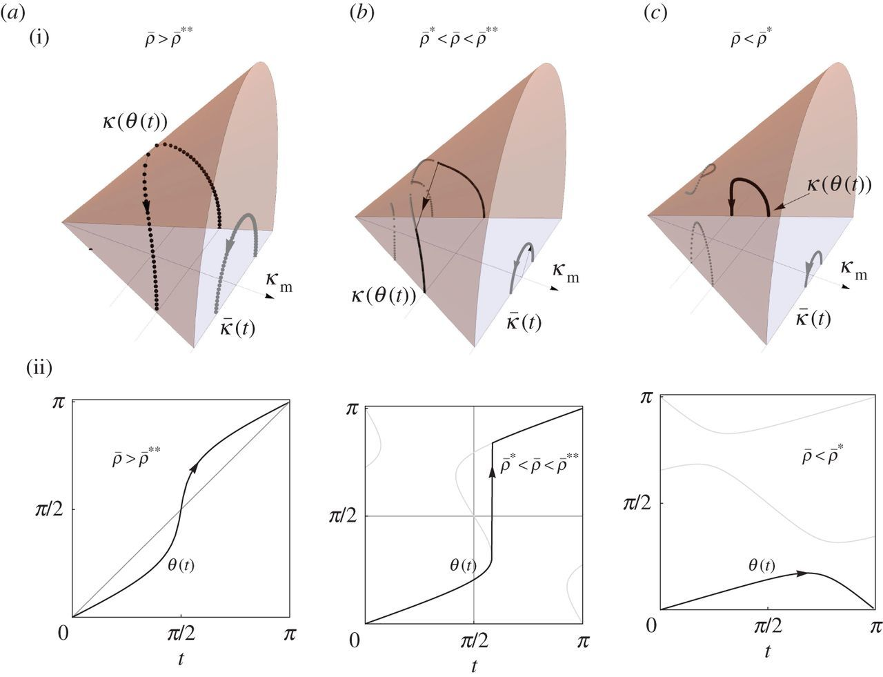 Multi-parameter actuation of a neutrally stable shell: a flexible