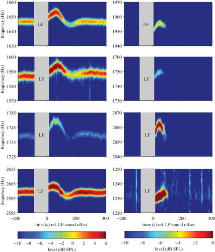 Low-frequency sound affects active micromechanics in the