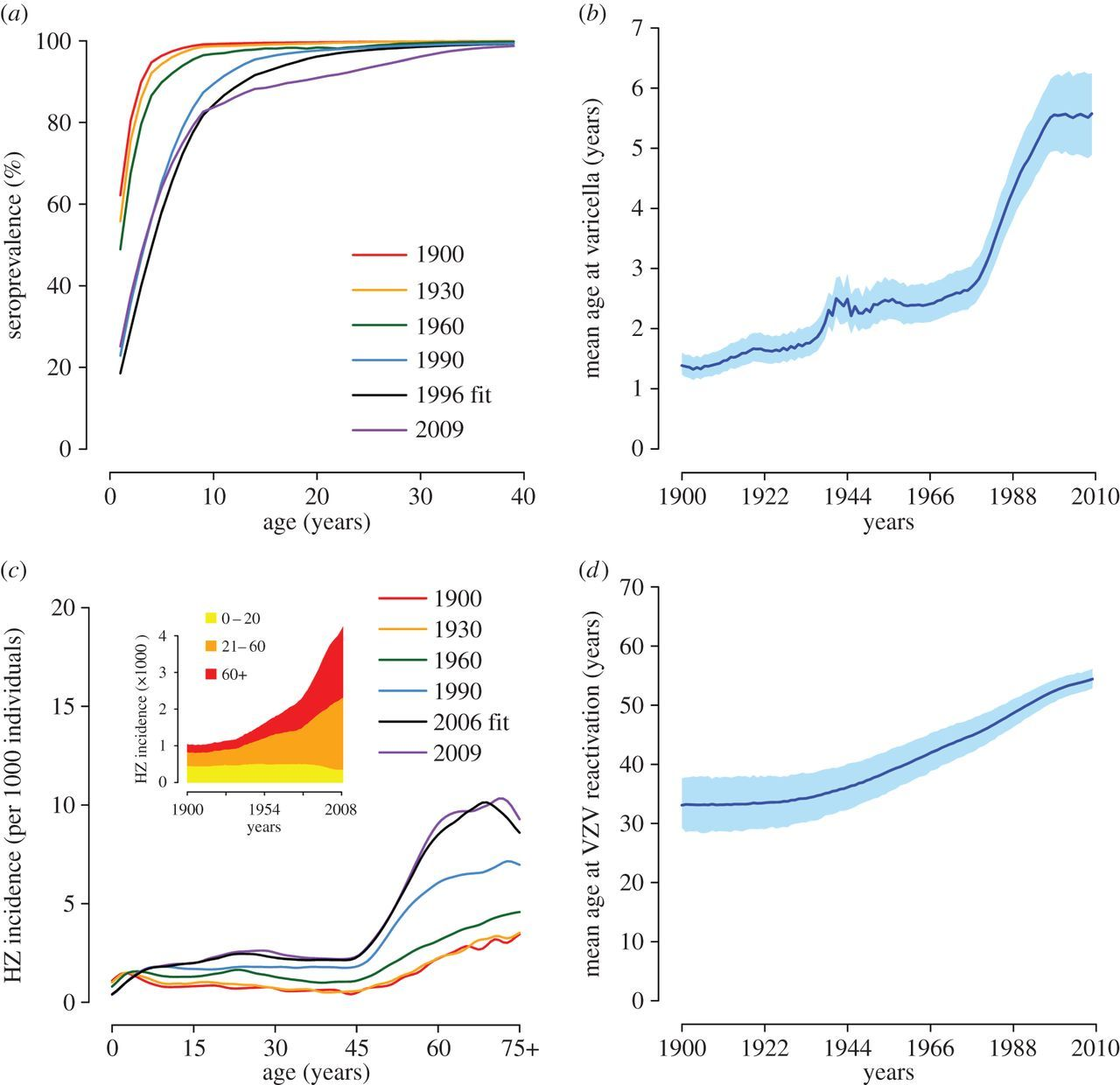 The impact of demographic changes on the epidemiology of herpes