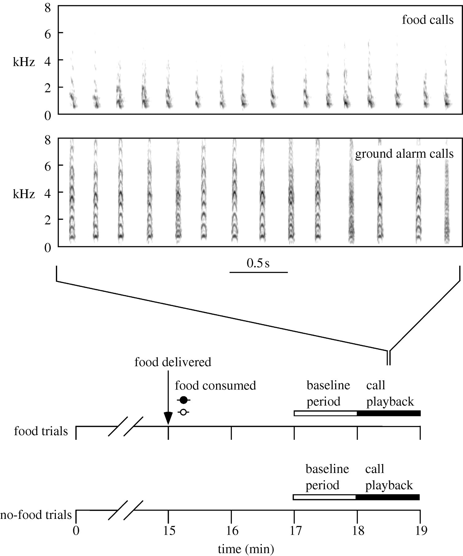 Representational signalling in birds | Biology Letters