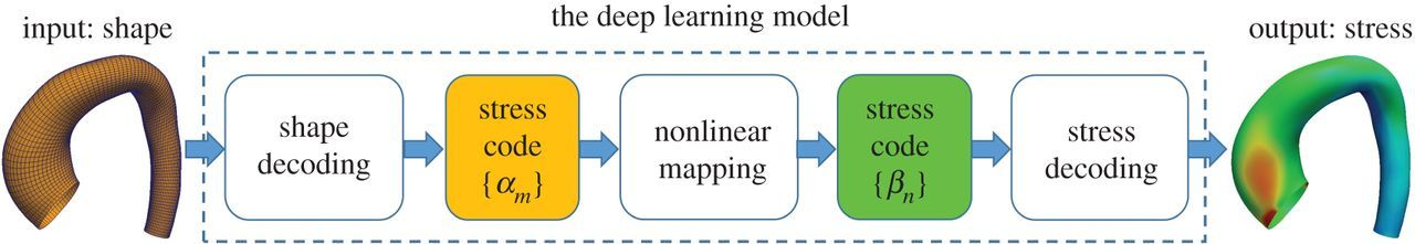 A deep learning approach to estimate stress distribution: a fast and