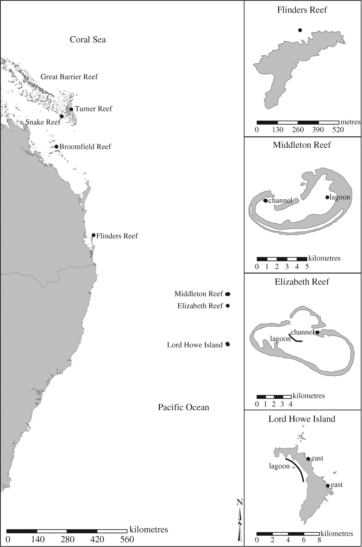 Genetic diversity and connectivity in a brooding reef coral