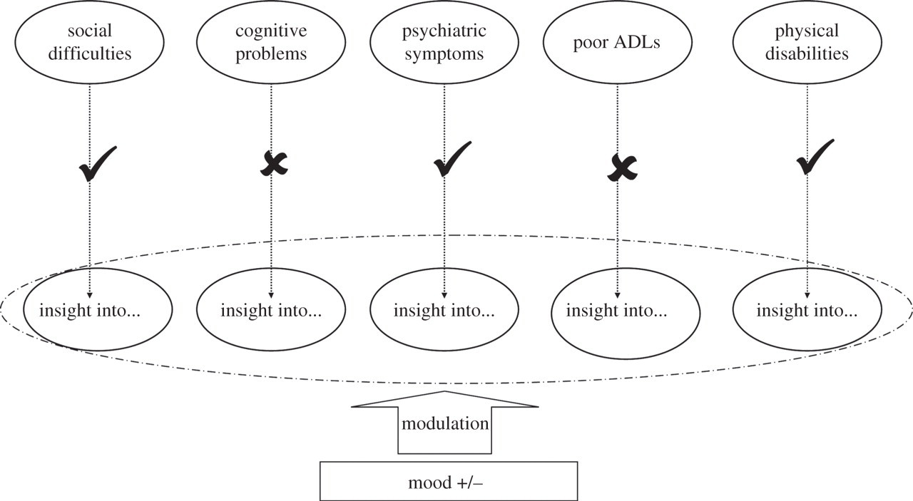 Failures of metacognition and lack of insight in