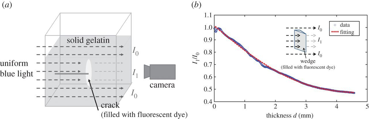 Experimental study on penny-shaped fluid-driven cracks in an