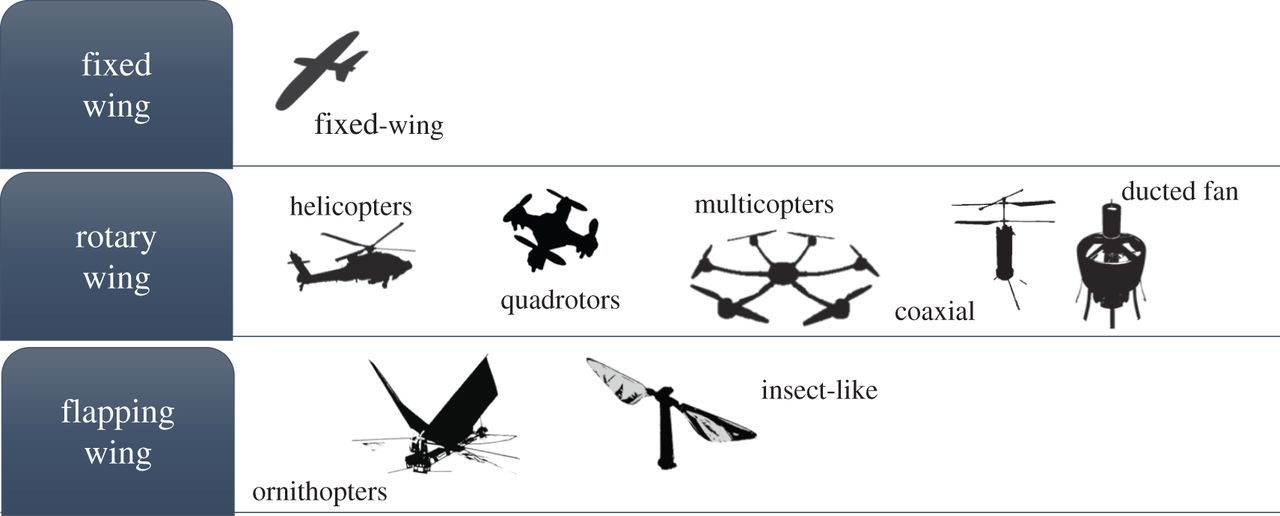 Energetics in robotic flight at small scales | Interface Focus