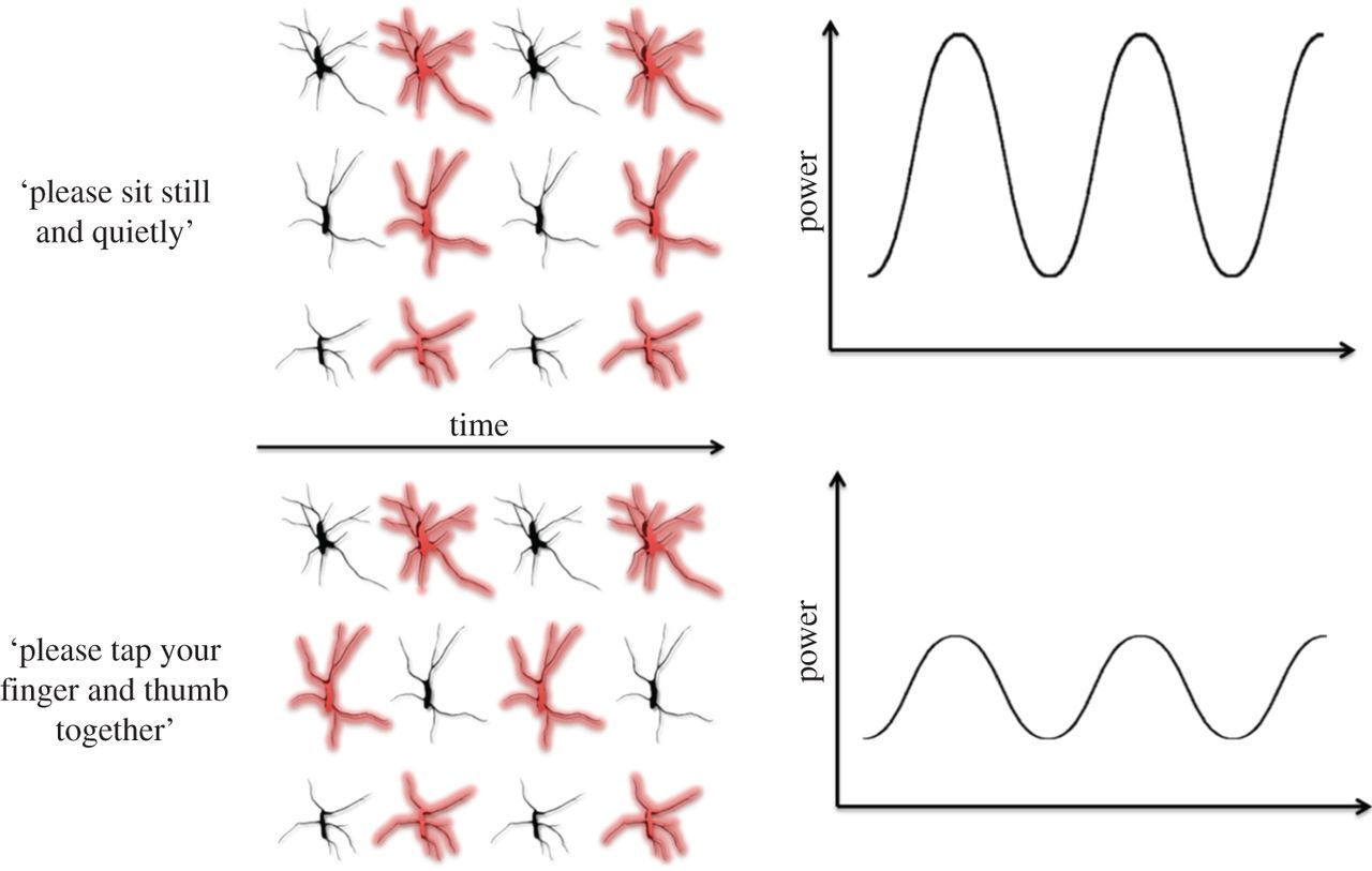The interpretation of mu suppression as an index of mirror neuron