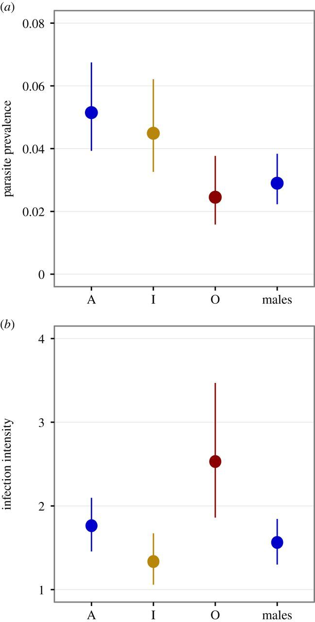 Intra- and intersexual differences in parasite resistance