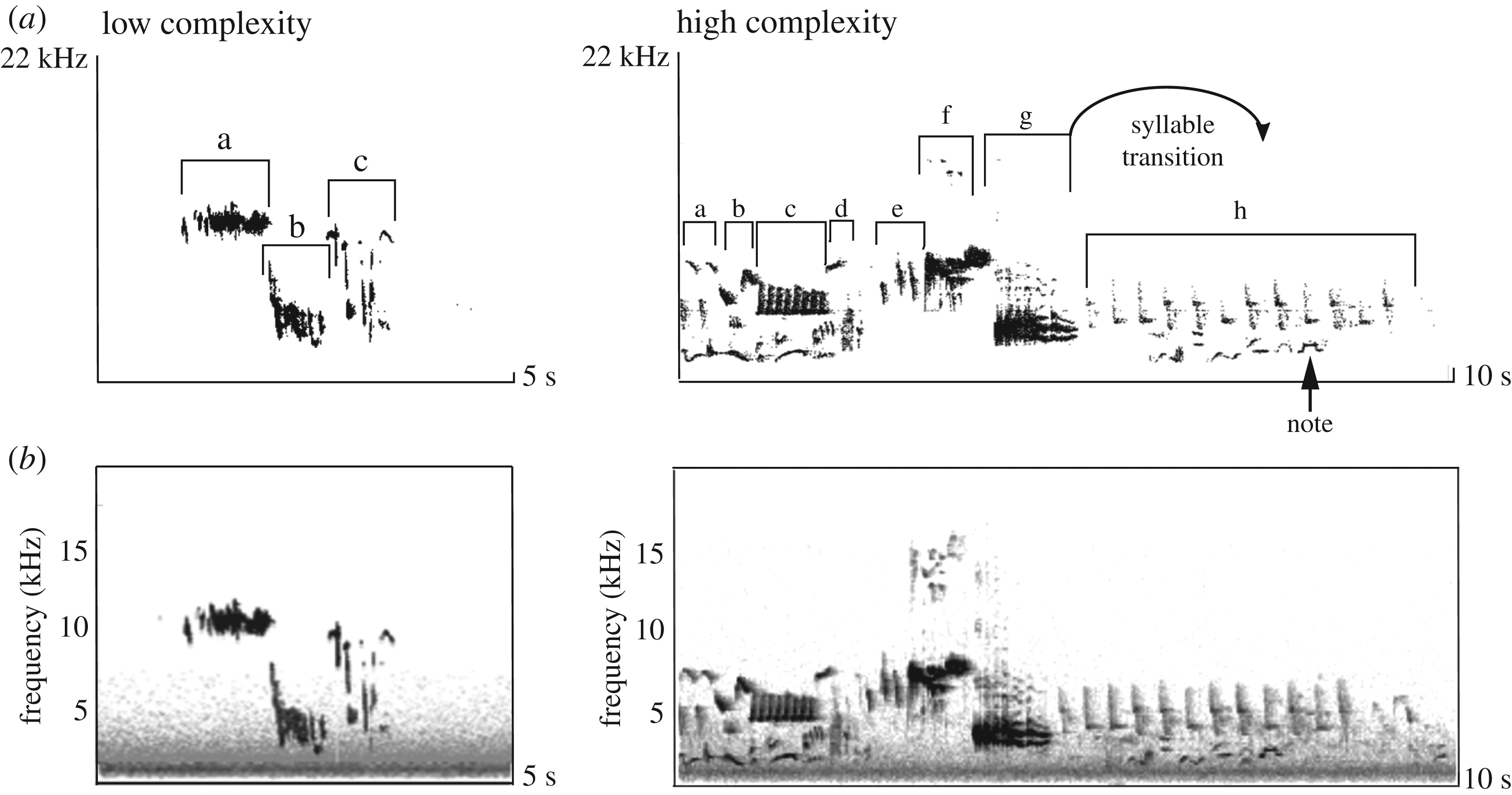 Signal complexity communicates aggressive intent during