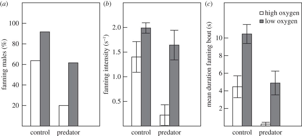 Hypoxia increases the risk of egg predation in a nest-guarding fish