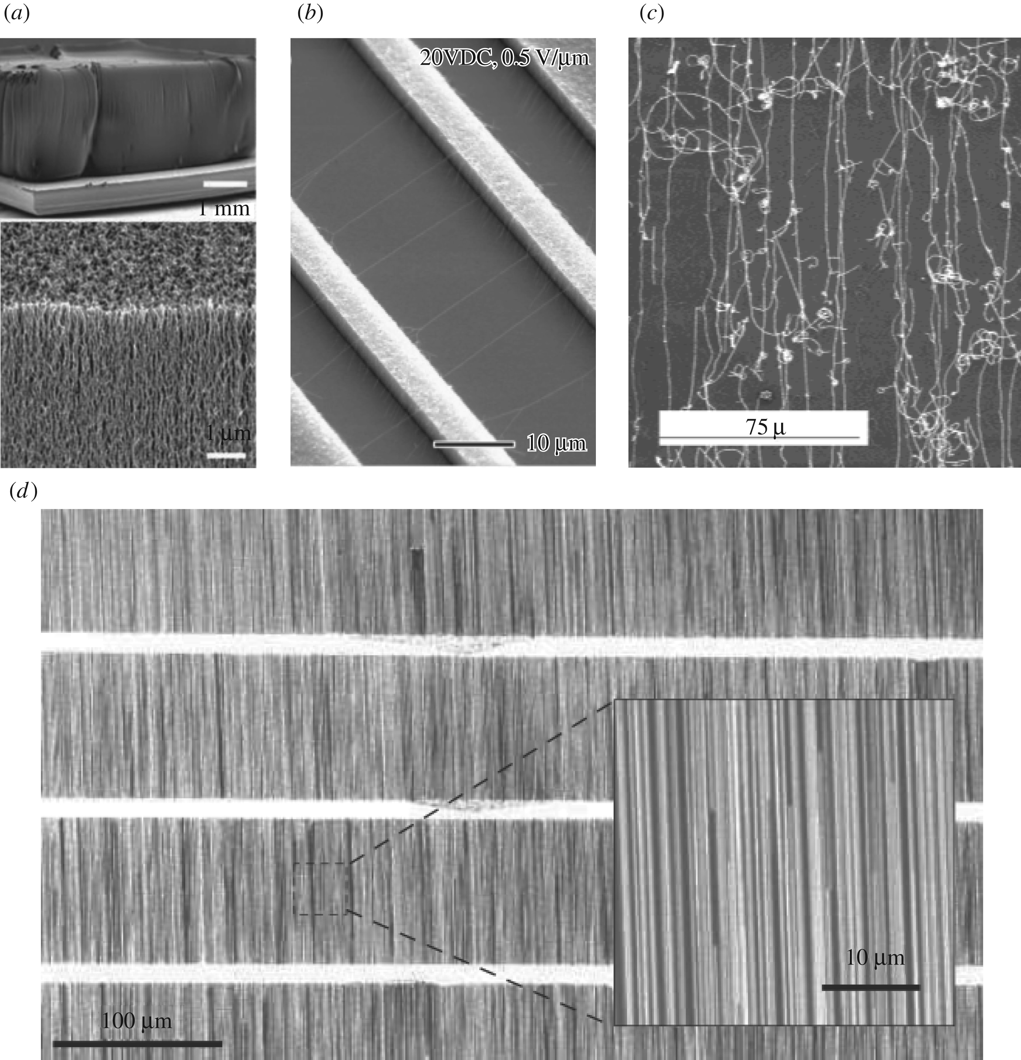 Science and applications of wafer-scale crystalline carbon