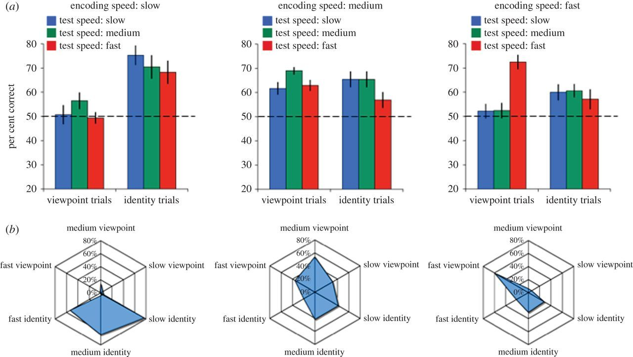 The development of newborn object recognition in fast and slow