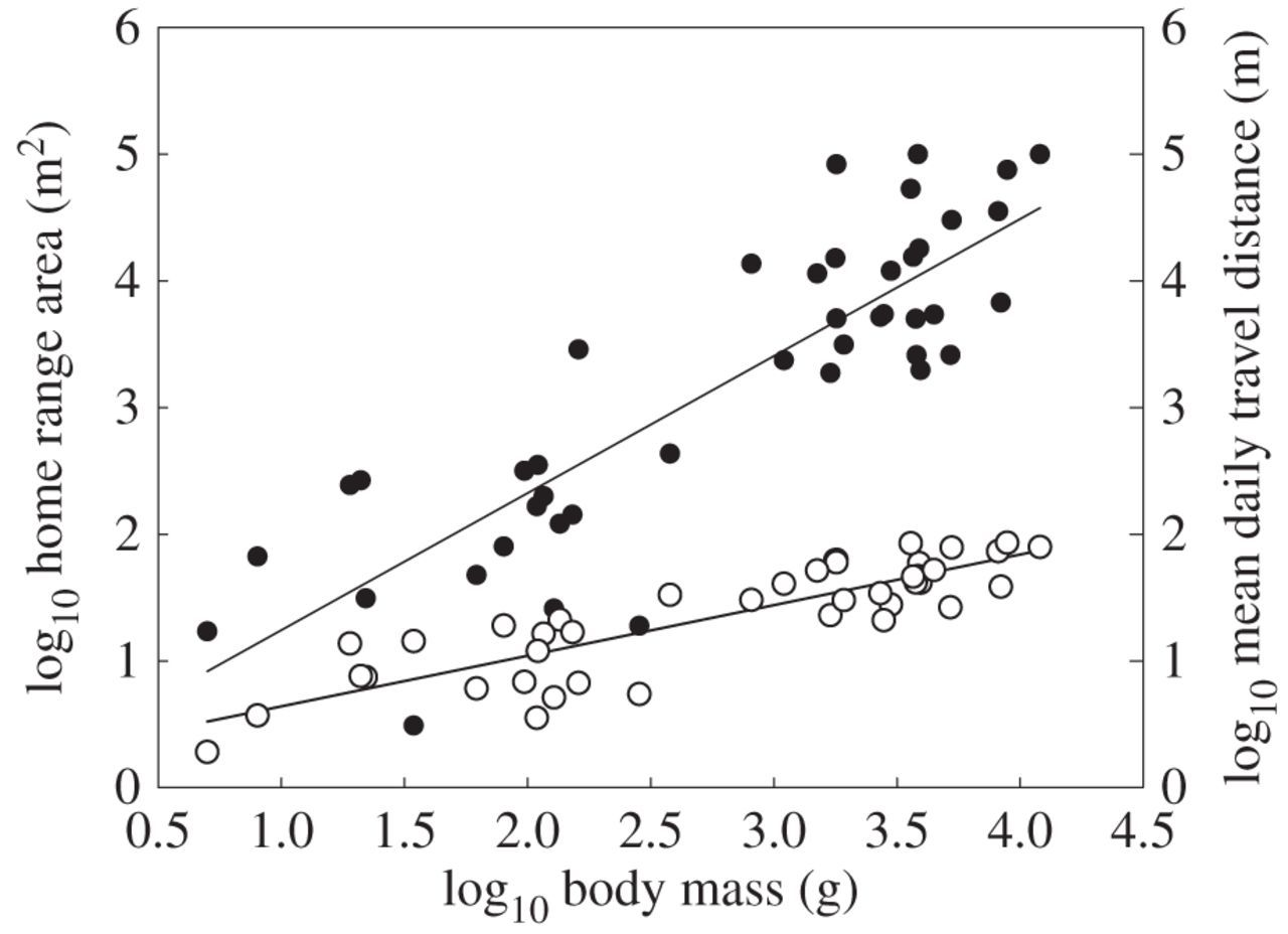 Allometric scaling of intraspecific space use | Biology Letters