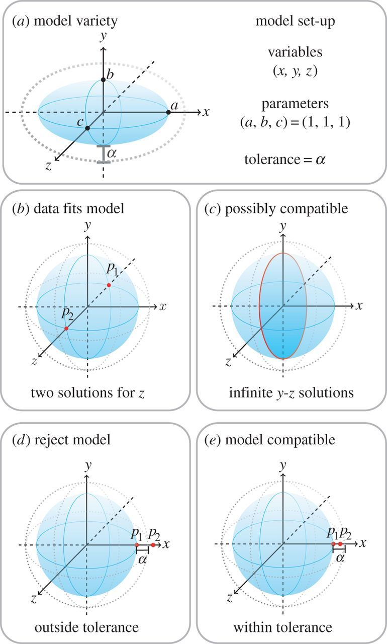 Numerical algebraic geometry for model selection and its application