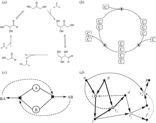 Synthetic Transitions Towards A New Synthesis