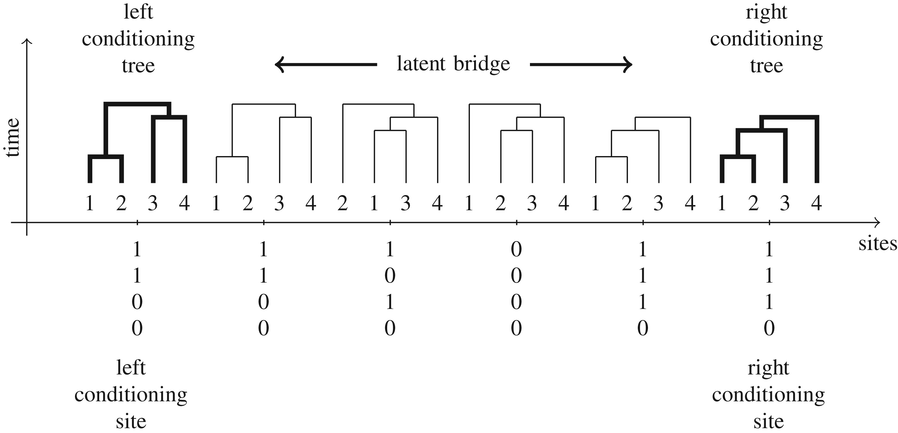Bridging trees for posterior inference on ancestral