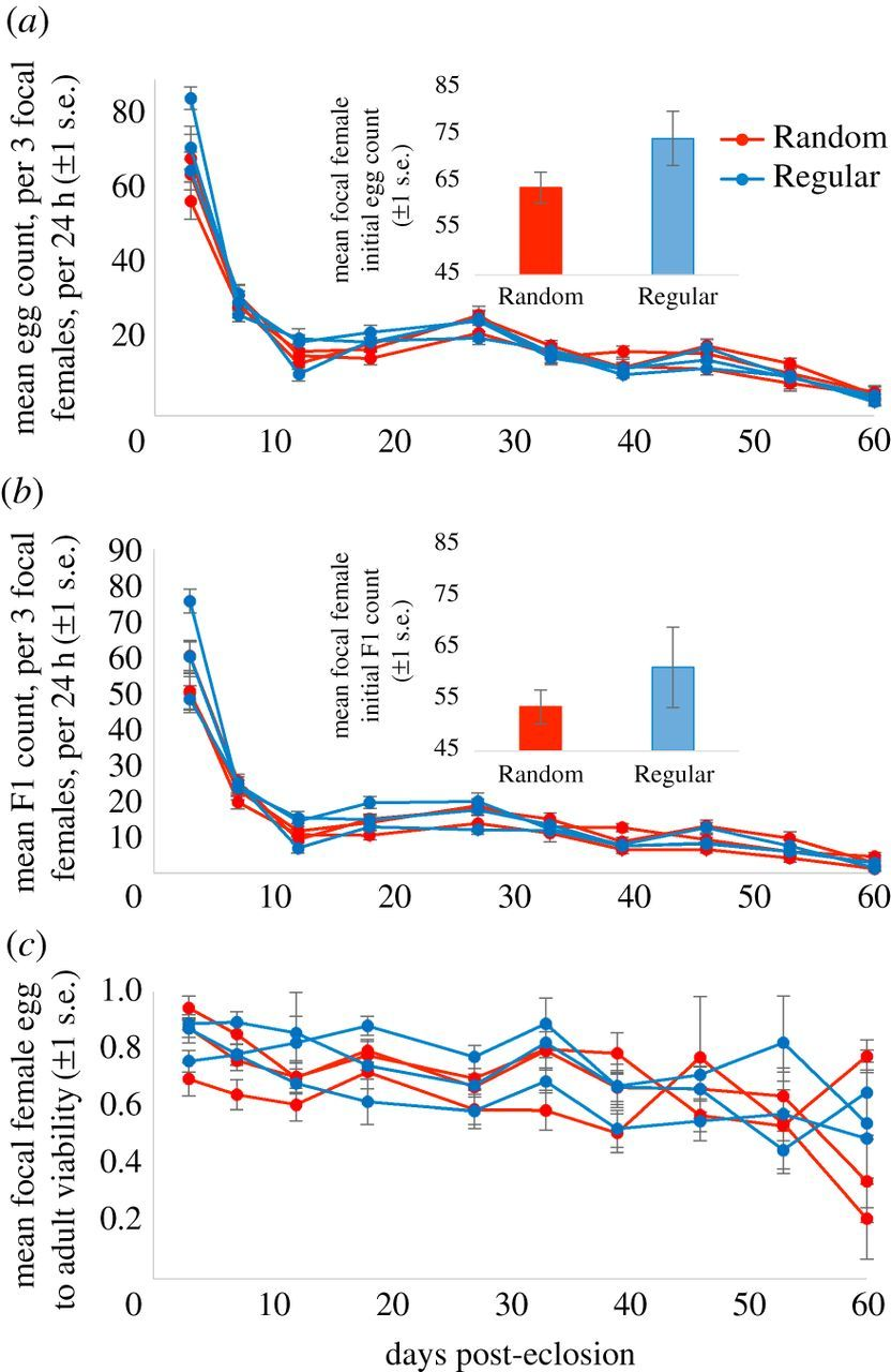 Manipulation of feeding regime alters sexual dimorphism for