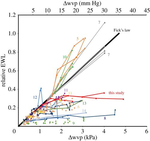 Physiological regulation of evaporative water loss in