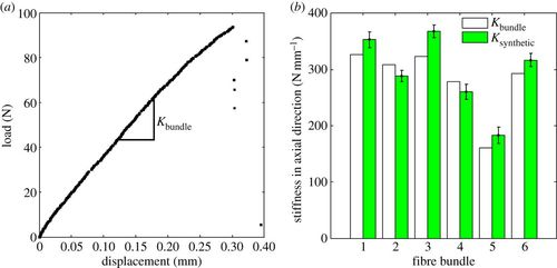 Correlations Between Axial Stiffness And Microstructure Of A