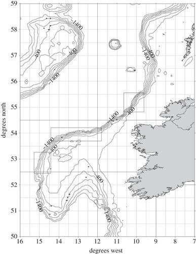 Trophic Interactions Of Fish Communities At Midwater Depths Enhance