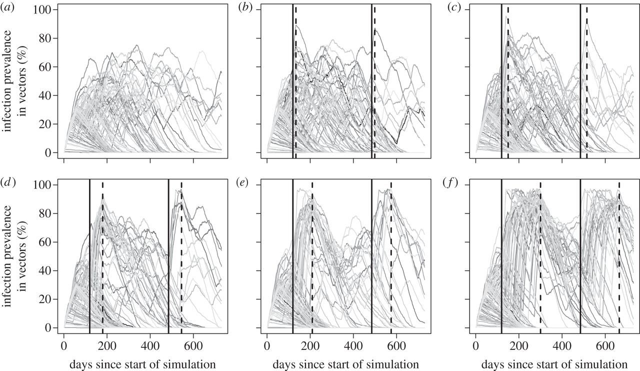 Bottlenecks in domestic animal populations can facilitate the