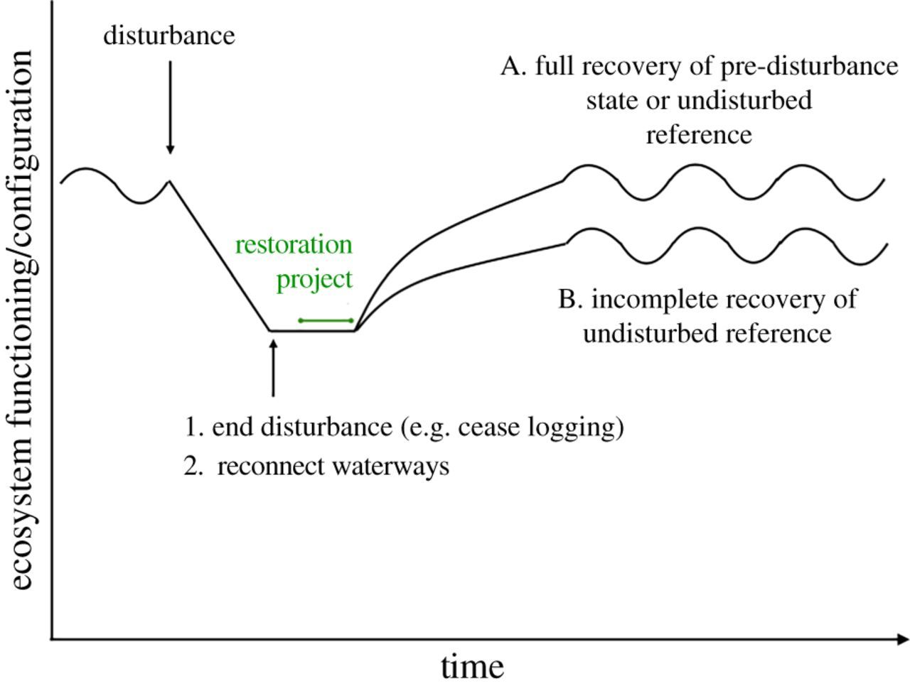 Restoration and repair of Earth's damaged ecosystems | Proceedings
