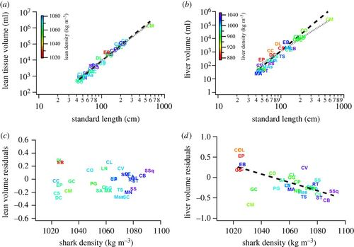 Physical trade-offs shape the evolution of buoyancy control