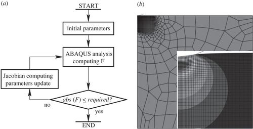An inverse method for determining the spatially resolved properties