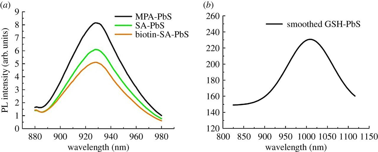 Water-mediated green synthesis of PbS quantum dot and its