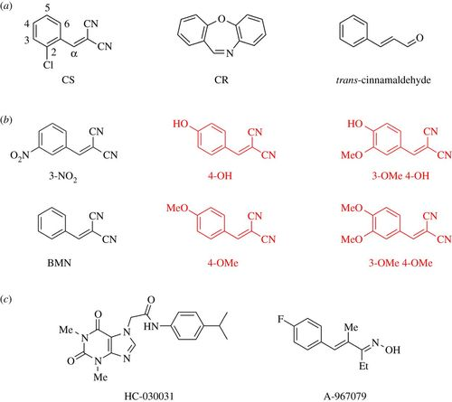 Potency of irritation by benzylidenemalononitriles in humans