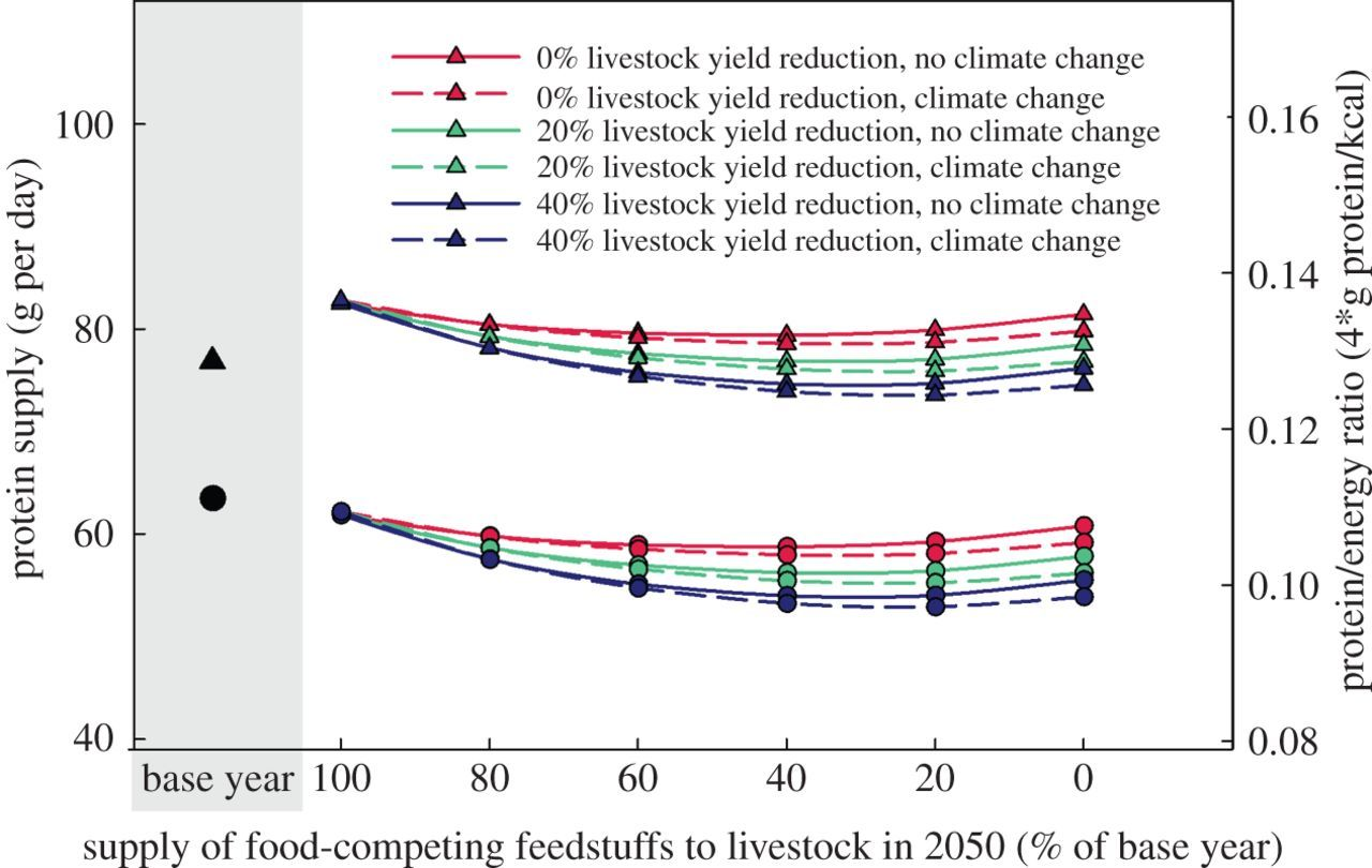 Impacts of feeding less food-competing feedstuffs to