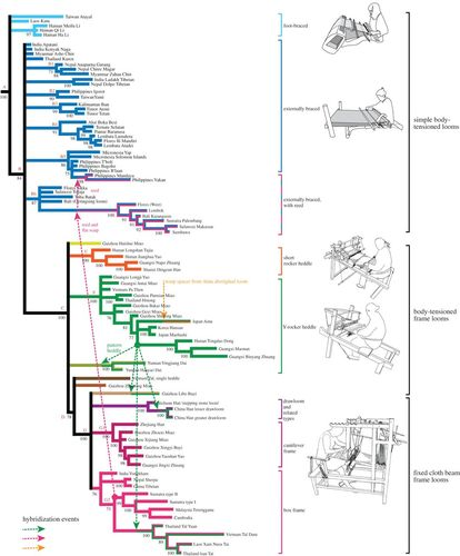The evolution of an ancient technology | Royal Society Open